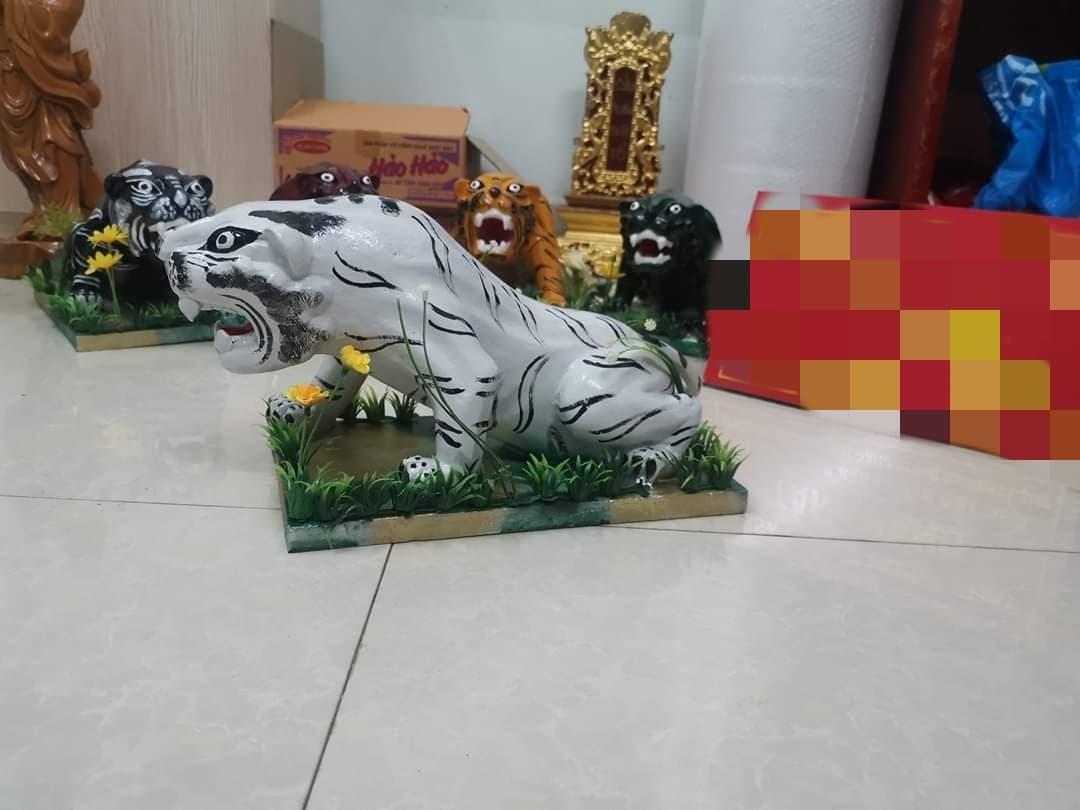 Ngu Ho Dung2