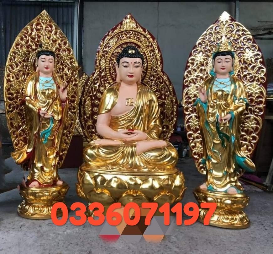 Tay Phuong Tam The